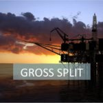 gross split
