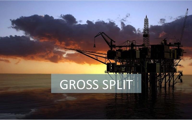 gross split