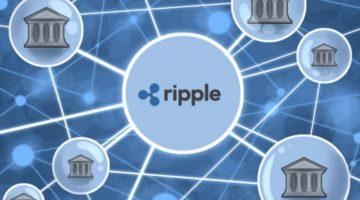 apa itu ripple
